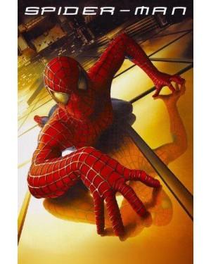 1  videocassetta spiderman